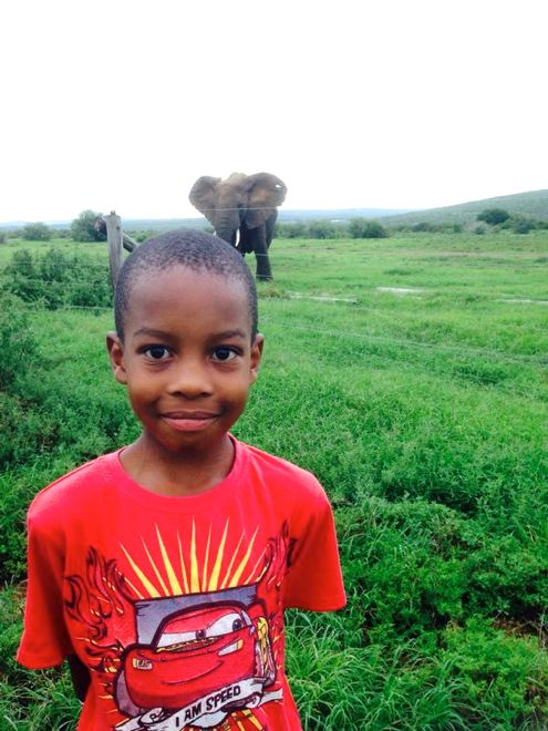 "This is Brian. He is 7. And he lives in a safari park. Read all about his amazing ""pets"" here: http://www.suitcasesandstrollers.com/interviews/view/living-in-a-safari-park?l=s #GoogleUs #suitcasesandstrollers #travel #travelwithkids #familytravel #familyholidays #familyvacations #traveltips #safari #elephants"