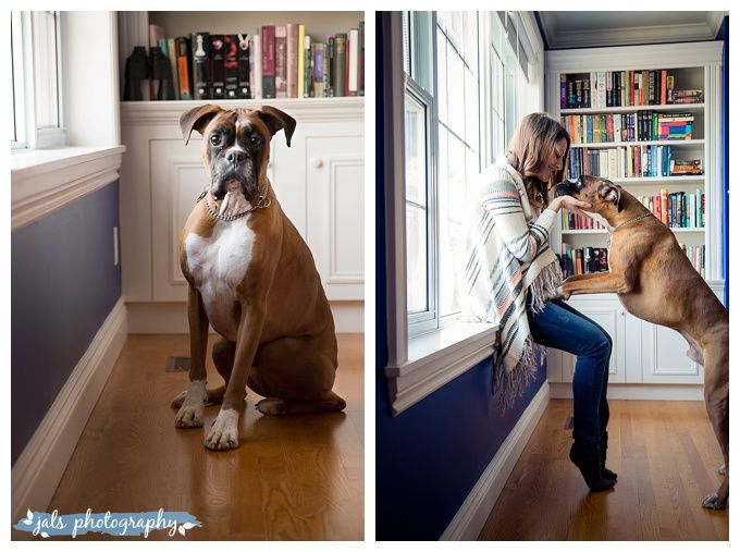 Indoor maternity photography with dog, Belleville