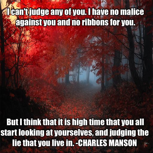 Charles Manson Quote - He may be psycho but I find this quote very interesting.
