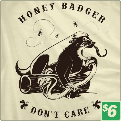 its true.: Gift, Shirts, Don T Care, Quote, Honey Badger, Badger Don T, Honeybadger, Messages