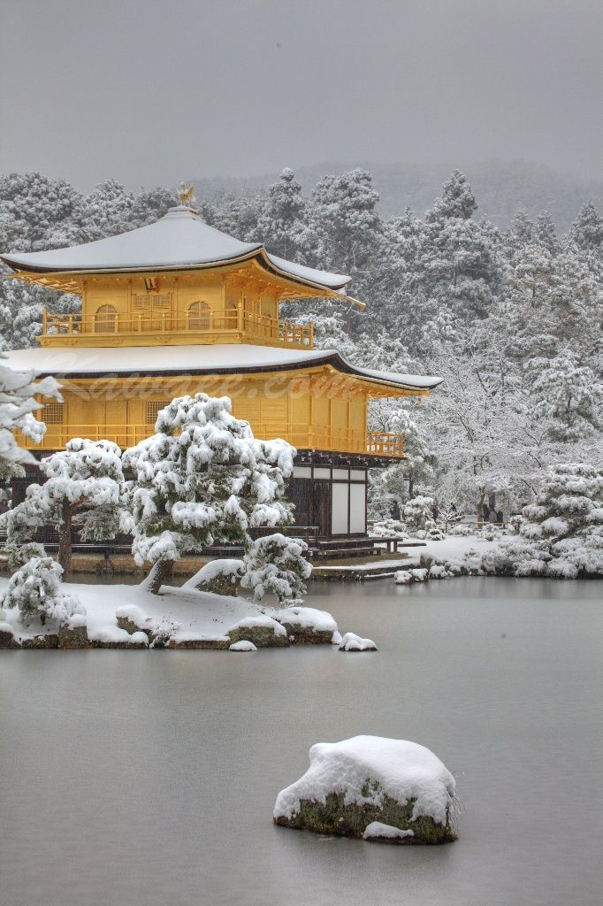 Kinkaku ji in Kyoto in winter. The golden pavilion and gardens are beautiful in all seasons but snow on the ground like this is rare in Kyoto.