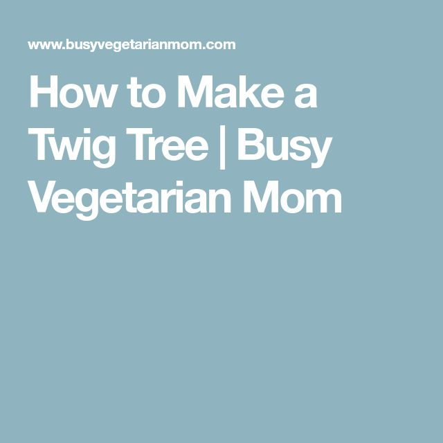 How to Make a Twig Tree   Busy Vegetarian Mom