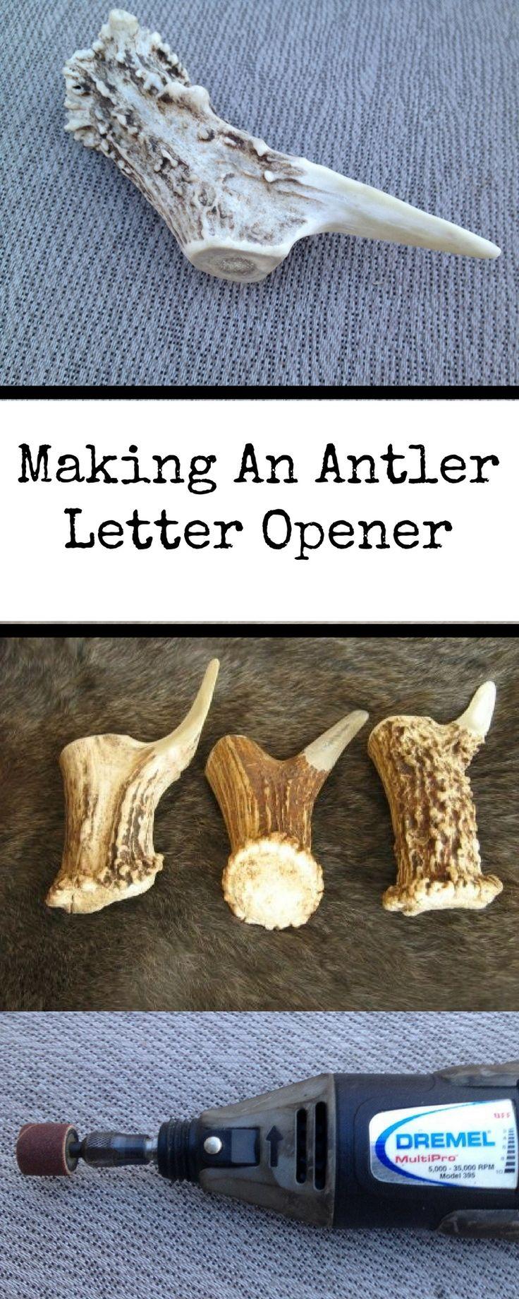 548 best antler crafts images on pinterest deer antlers deer how to make an antler letter opener arubaitofo Images