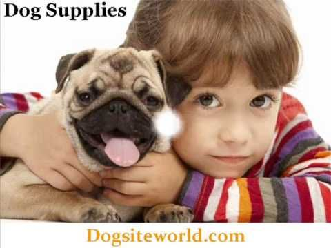 DogSiteWorld Store The Leading Online Pet Supplies Store - This is an excelent article for the concerned dog owner... Dog food and dog supplies