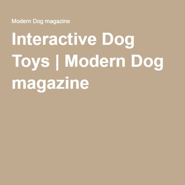 Interactive Dog Toys | Modern Dog magazine