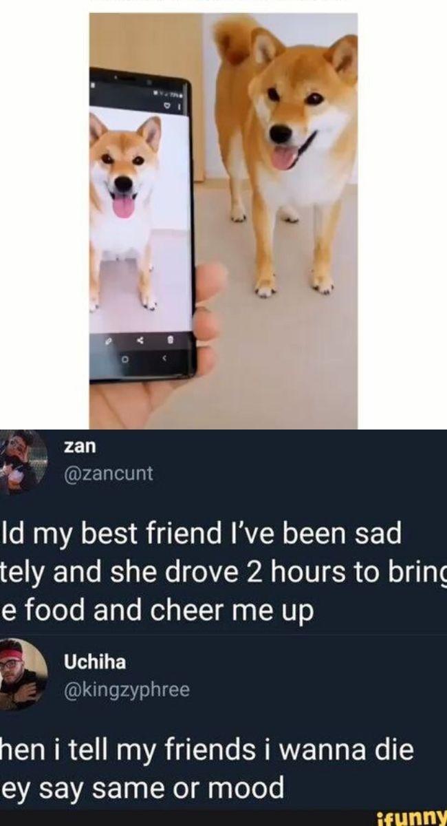 Top 26 Bring Me Food Memes Food Memes Memes I Foods