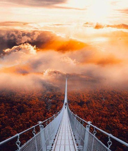 Du denkst, dieses Foto ist eine Animation aus einem Fantasy-Film? Nein, es ist die Geierlay-Hängebrücke im Hunsrück.