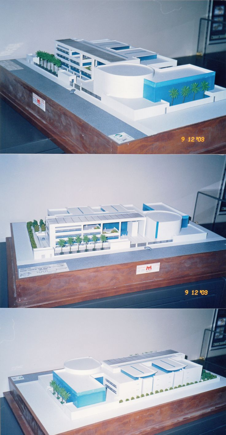 Model for the Saudi Medical Health Society Competition entry 2003