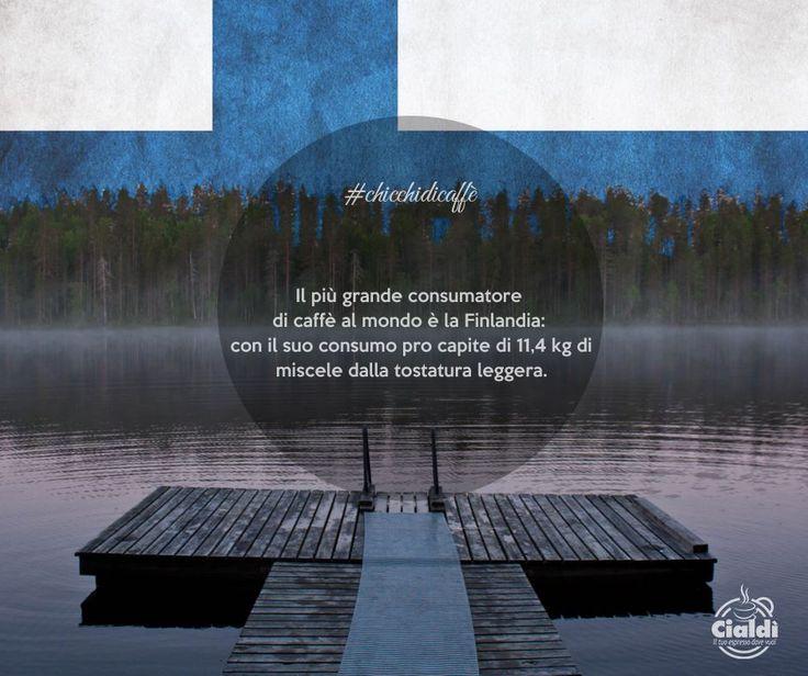 Non l' avresti detto, vero?  #chicchedicaffè   http://www.cialdi.it/  #coffeelovers      #relax   #smile
