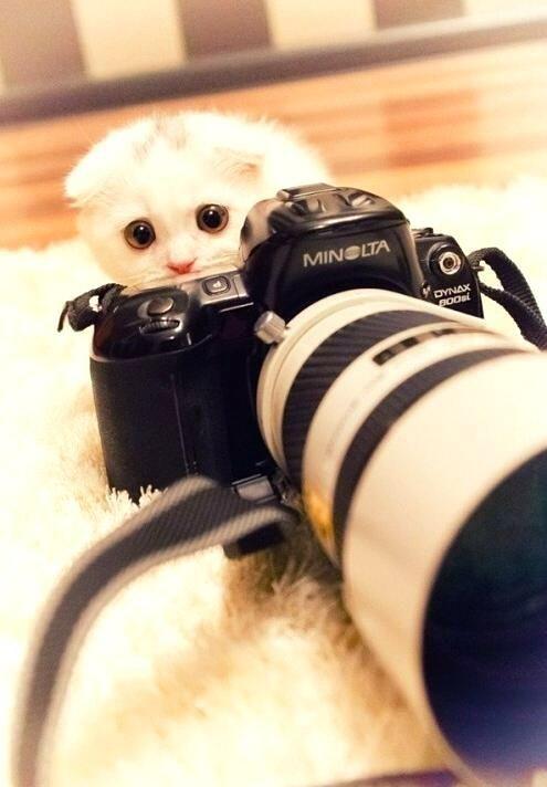 Have you entered the #DoSomethingPhoto contest?