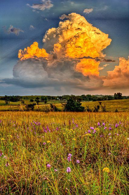 Stormy Pasture. Taken in Alma, Kansas.
