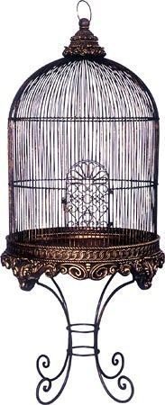 one of the most beautiful birdcages i've ever seen
