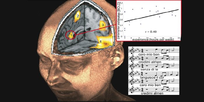 Neuroscientists Discover A Song That Reduces Anxiety By 65 Percent