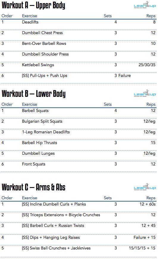 muscle building workout program pdf