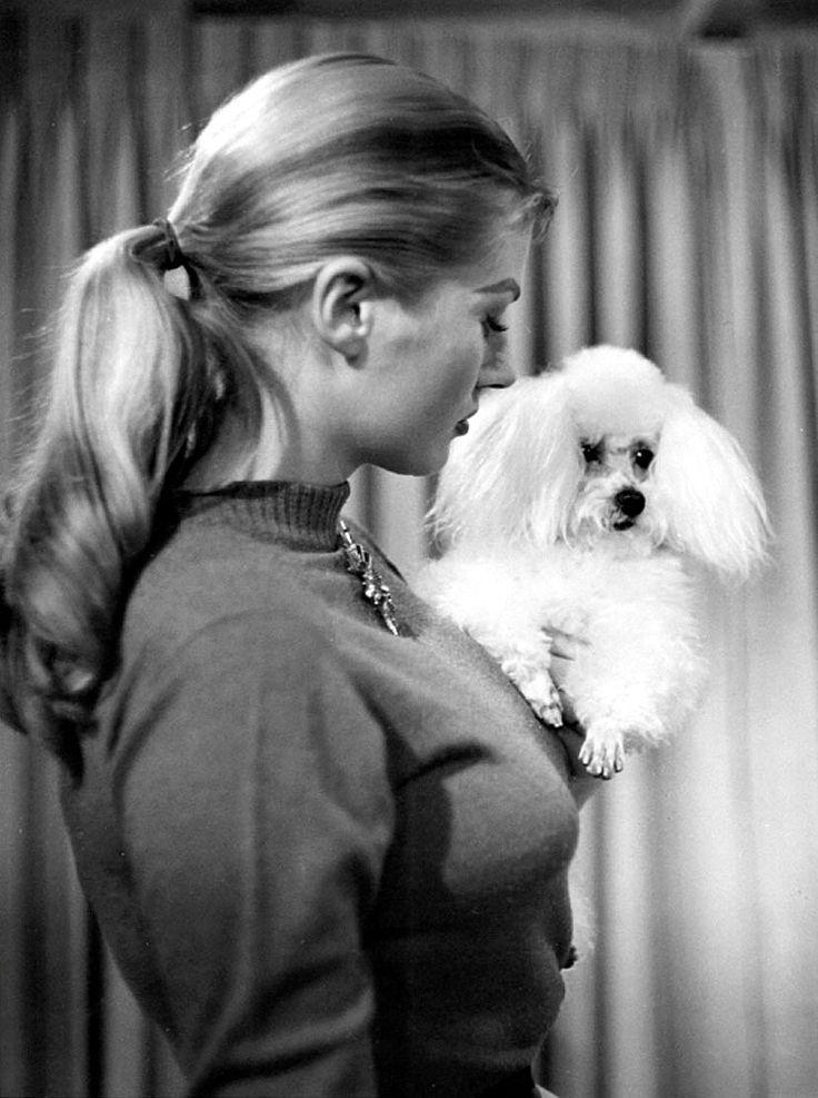 Anita Ekberg with toy poodle