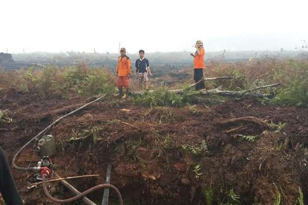200 Hektare Lahan Suaka Margasatwa Kerumutan Terbakar