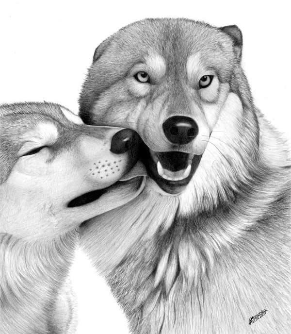 Lizz -10 Lovely Dog Drawings for Inspiration, http://hative.com/dog-drawings/,