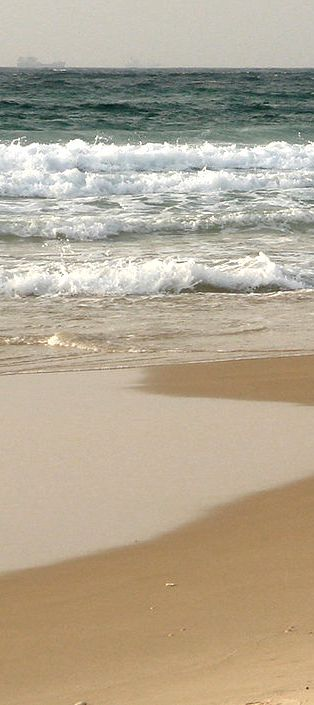 Best Beaches in Texas!