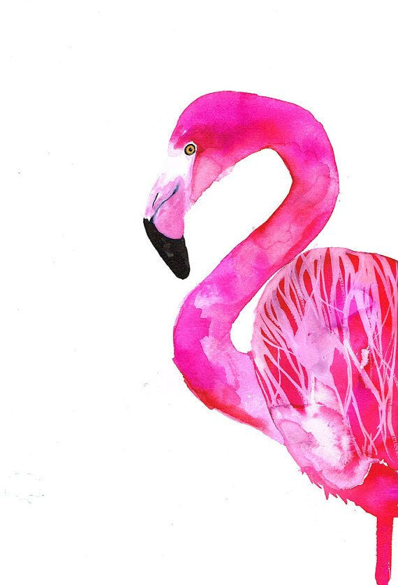 Flamingo print 30x40 cm 12x157 inch by SofieRolfsdotter on Etsy, $33.00