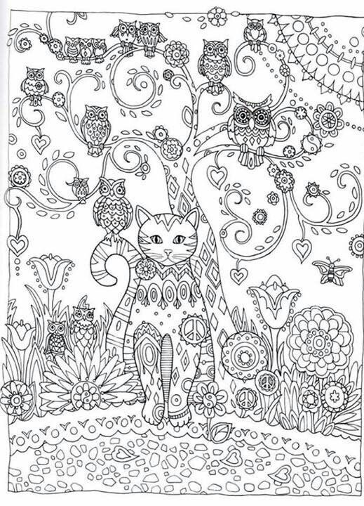 Pin Op Cats To Color