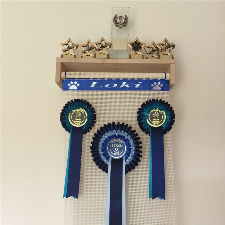 Ideas for displaying Rosettes and Trophies