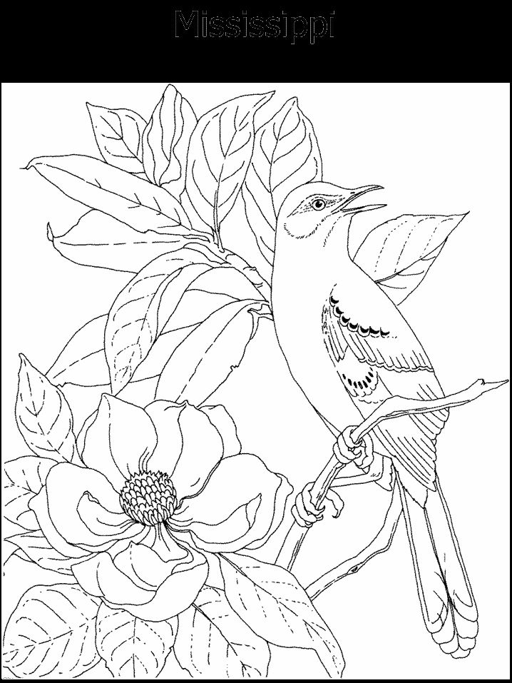 state emblems coloring pages mississippigeographycoloring pageshomeschool - Geography Coloring Book