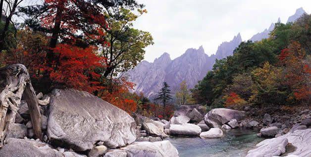 Randonnée en Corée du Sud : circuit, trek et voyage