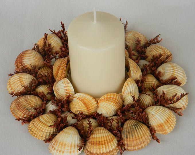 Natural shell centerpiece with candle