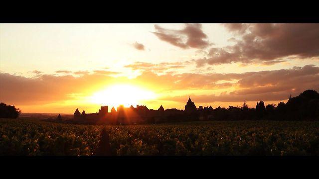 """Une journée à Carcassonne"" (Feu d'artifice du 14 Juillet 2012) by Dark Light Studios. https://www.facebook.com/darklightstudios.fr"