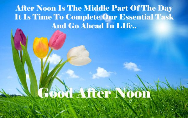 Good Afternoon Quotes Hd Wallpapers Good Afternoon Quotes Afternoon Quotes Good Morning Wishes