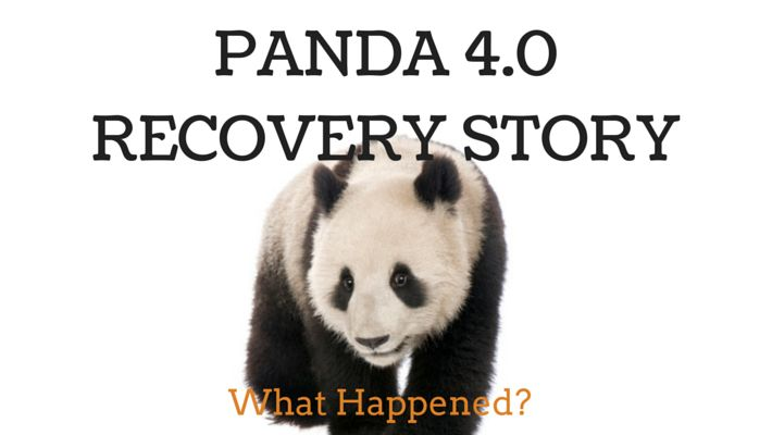 How the Panda 4.0 update hit the rankings of small businesses and how one small business recovered | Blog post by SEO Maverick