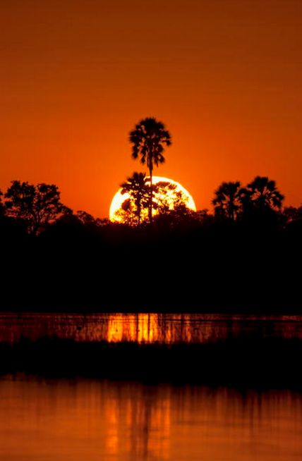A burning sunset in the Okavango Delta, Botswana