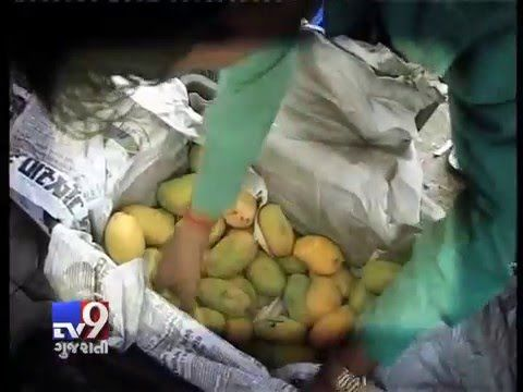 Surat: Calcium Carbide is a reality that all mango lovers will have to face, going by its rampant use for ripening the fruit at Surat Fruit Markets.  Subscribe to Tv9 Gujarati https://www.youtube.com/tv9gujarati Like us on Facebook at https://www.facebook.com/tv9gujarati Follow us on Twitter at https://twitter.com/Tv9Gujarati Follow us on Dailymotion at http://www.dailymotion.com/GujaratTV9 Circle us on Google+ : https://plus.google.com/+tv9gujarat