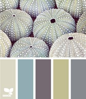 If you are looking at putting a colour scheme together look no further than nature...when does it ever really get it wrong??