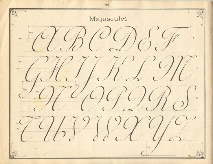 French penmanshipFancy Fonts, Typography Hands, Calligraphy Lessons, Writing, Ornaments Penmanship, Letters Art, French Penmanship, Things Written, Beautiful Penmanship