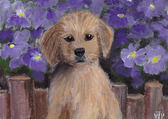 NFAC ACEO original painting animal pet puppy flowers signed by T.Volokhova #Impressionismminiature