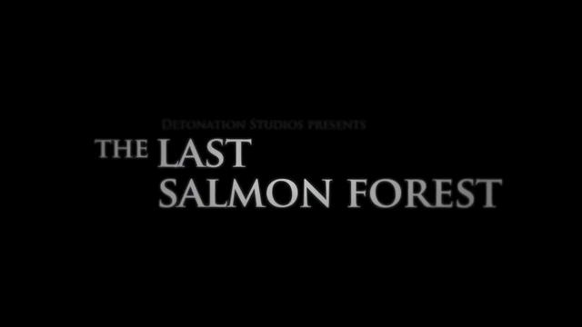 """The Last Salmon Forest"" The Drake awards submission by Detonation Studios. After a grueling but rewarding 11 day shoot in South East Alaska's Tongass National Forest we were invited to submit a digital short for The Drake film awards. With only a handful of days to edit this is our submission that won an award for Best Cinematography."