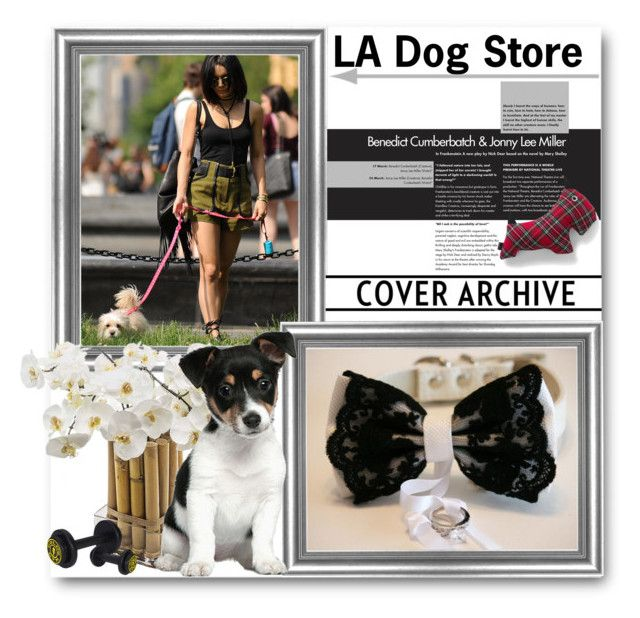 """LA Dog Store"" by ladogstores on Polyvore featuring Sia, Lands' End, rustic and country"