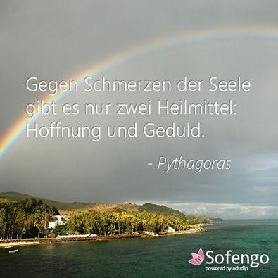 Gegen Schmerz der Seele gibt es nur zwei Heilmittel : Hoffnung und Geduld.- Pythagoras
