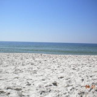 Gulf shores Alabama