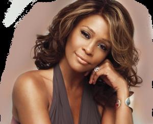Investigador privado: Whitney Houston fue asesinada por narcotraficantes - Cachicha.com