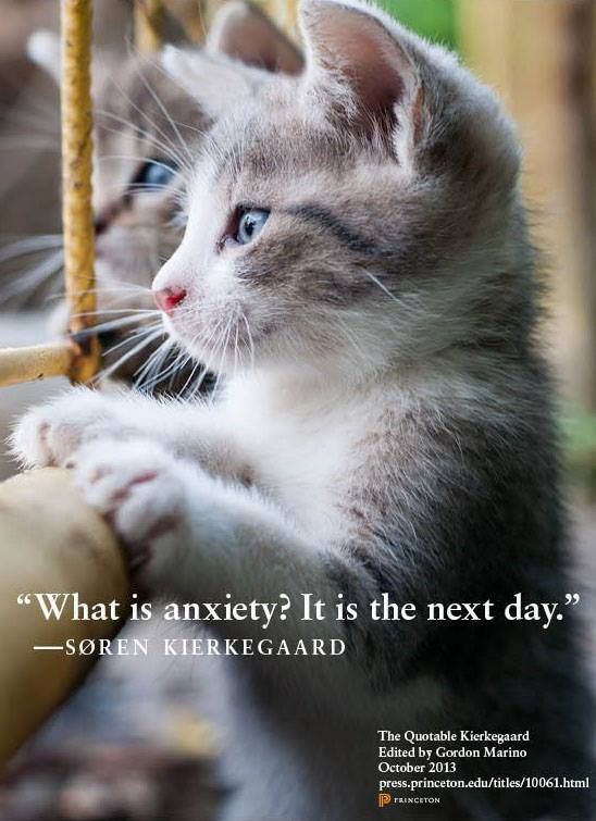What is anxiety ?