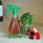 All Natural Mosquito Spray - this isn't what we think of as a homemade remedy but I'd rather try this than be looking for remedies for removing the itch from mosquito bites.