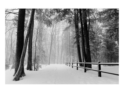 michigan country images | Winter Country Lane, Michigan Ensiluokkainen giclee-vedos AllPosters ...