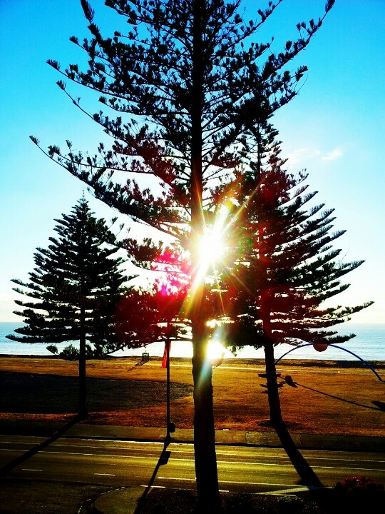 Marine parade Napier New Zealand. Photo by Kylie Wetherall.