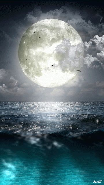 Waving sea with full moon and flying birds <3 :)
