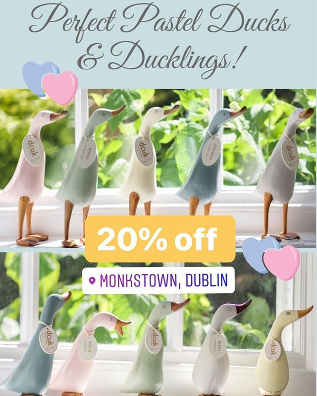 Mothers Day gift idea  20% off all our Ducks from now until Easter.  Please show this post to avail of the offer. #mothersday #giftideas #monkstown #spring #recent # #