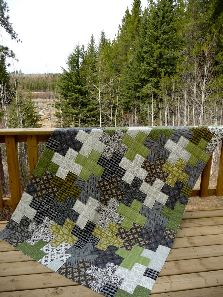 teenage boy quilts   Fabric: Curious Nature by Parson Gray for FreeSpirit fabrics