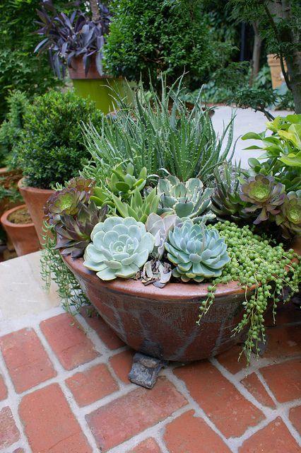 Potted succulent garden by KarlGercens.com, via Flickr