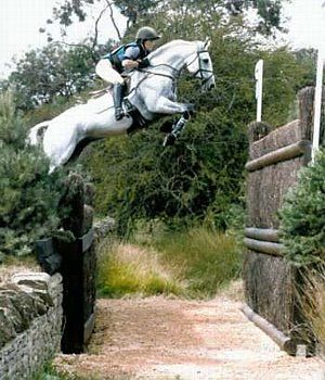 Would you jump this? No mainly because I care about my horse too much to force him over that…